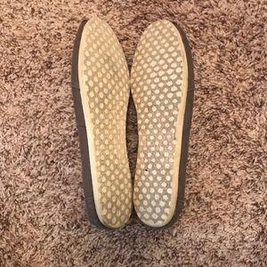 Toms Shoes - TOMS Ash Canvas Classics